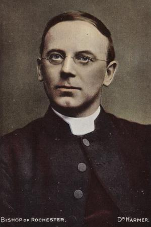 https://imgc.artprintimages.com/img/print/bishop-of-rochester-dr-harmer_u-l-pp8h6x0.jpg?p=0