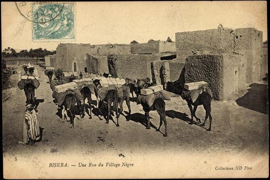 Biskra Algerien, Une Rue Du Village Nègre, Bepackte Kamele--Giclee Print