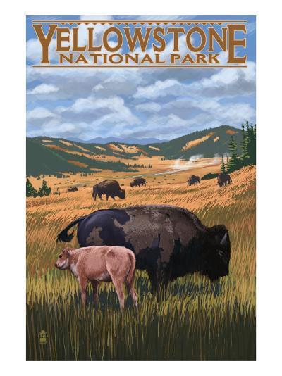 Bison and Calf Grazing - Yellowstone National Park-Lantern Press-Art Print