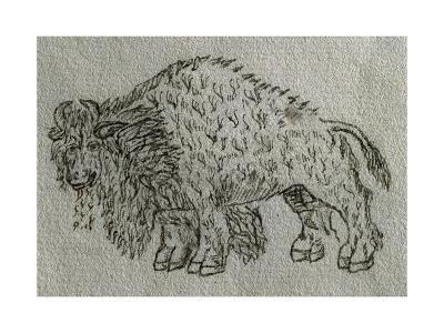 Bison, Drawing, 16th Century--Giclee Print