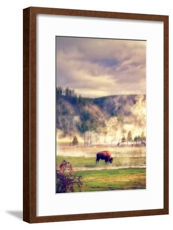 Bison in the Mist-Vincent James-Framed Photographic Print