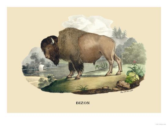 Bison-E^f^ Noel-Art Print