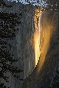 Golden Waterfall by Bjoern Alicke