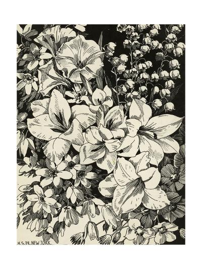 Black and White Drawing of Lily of the Valley with Daffodils--Art Print