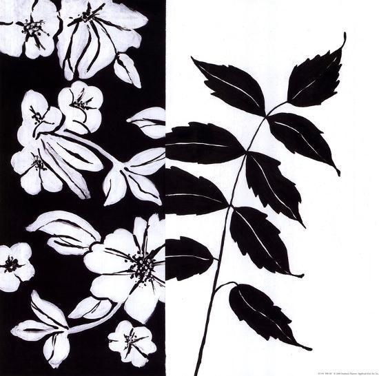 Black And White III-Stephanie Marrott-Art Print