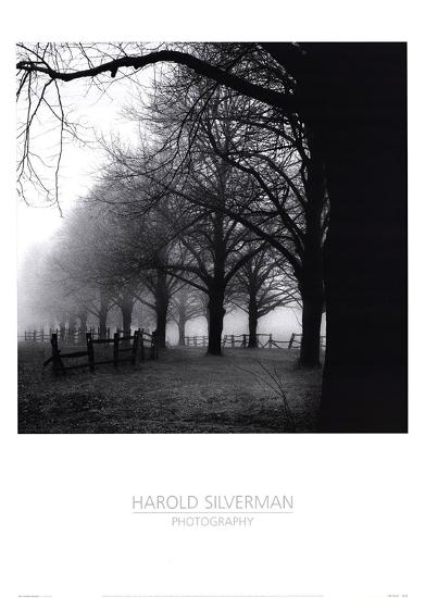 Black And White Morning-Harold Silverman-Art Print
