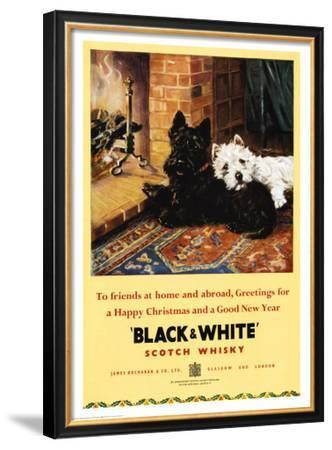 Black and White Scotch