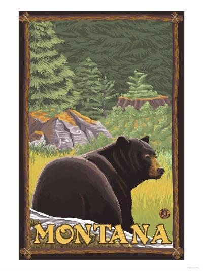 Black Bear in Forest, Montana-Lantern Press-Art Print