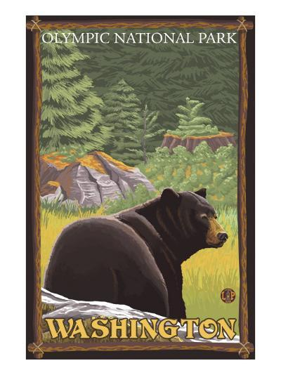 Black Bear in Forest, Olympic National Park, Washington-Lantern Press-Art Print