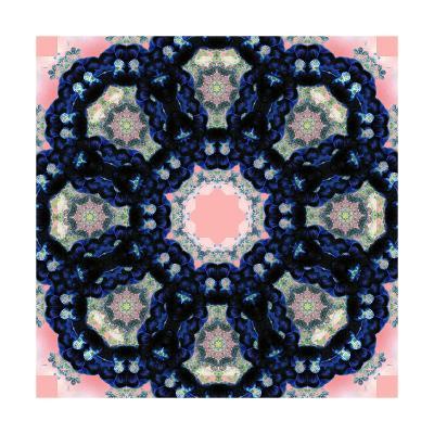 Black Blossom Mandala-Alaya Gadeh-Art Print