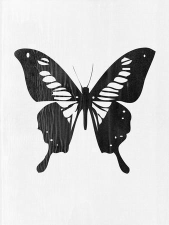 https://imgc.artprintimages.com/img/print/black-butterfly_u-l-q1gv4jx0.jpg?p=0