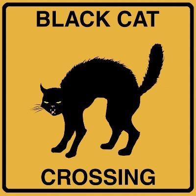 Black Cat Crossing-Tina Lavoie-Giclee Print
