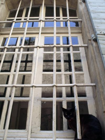 Black Cat Sitting in a Barred Window, in Menerbes-Jim Sugar-Photographic Print