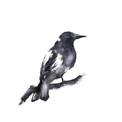 Black Crow-Sophia Rodionov-Art Print