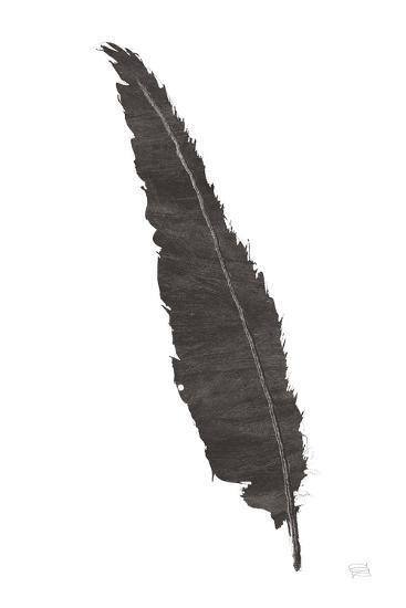 Black Feather VI-Chris Paschke-Art Print
