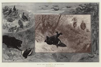 Black Game Shooting in the Highlands-John Charlton-Giclee Print