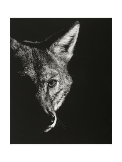 Black Glimpse VI-Julie Chapman-Art Print