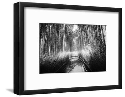 Black Japan Collection - Kyoto Bamboo Trail-Philippe Hugonnard-Framed Photographic Print