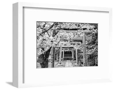 Black Japan Collection - Yoshida Shrine Torii-Philippe Hugonnard-Framed Photographic Print
