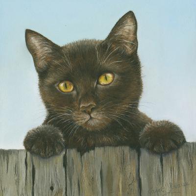 Black Kitten-Janet Pidoux-Giclee Print