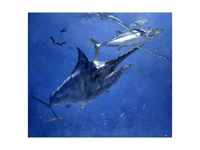 Black Marlin, Two Dogtooth Tuna and Needlefish-Stanley Meltzoff-Giclee Print