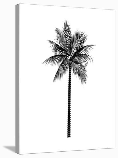 Black Palm-Jetty Printables-Stretched Canvas Print