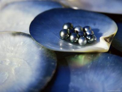 https://imgc.artprintimages.com/img/print/black-pearls-cook-islands-south-pacific_u-l-p1toe50.jpg?artPerspective=n