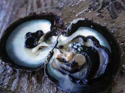Black Pearls-Douglas Peebles-Photographic Print