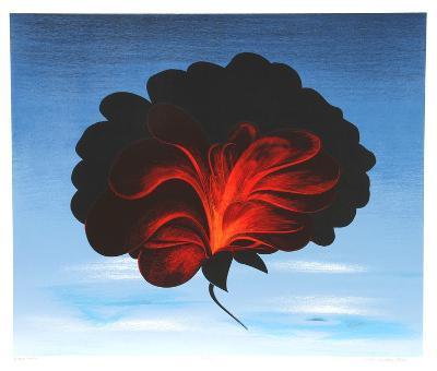 Black Rose-John Cedarstrom-Collectable Print