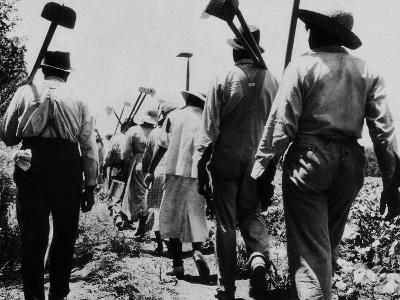 Black Slaves Going to Work--Photographic Print