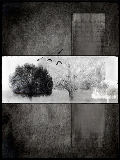 Black Tree 1-LightBoxJournal-Giclee Print
