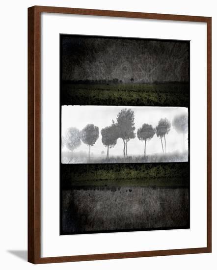 Black Tree 2-LightBoxJournal-Framed Giclee Print