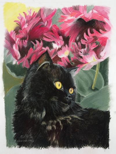 Black Tulips-Anne Robinson-Giclee Print