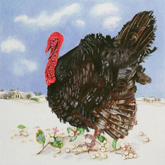Black Turkey with Snow Berries, 1996-E.B. Watts-Giclee Print