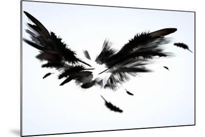 Black Wings-Sergey Nivens-Mounted Art Print