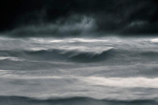 Black Wonder-David Baker-Photographic Print