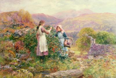Blackberry Gatherers-Henry John Yeend King-Giclee Print