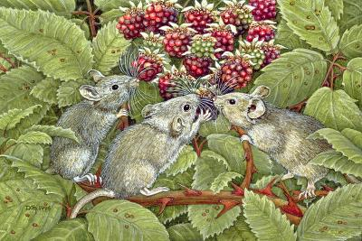 Blackberrying, 1996-Ditz-Giclee Print