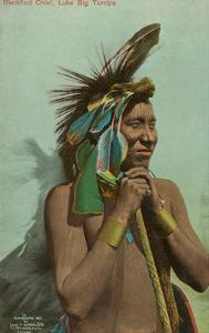 Blackfoot Chief, Luke Big Turnips