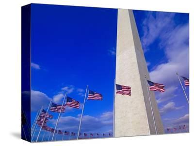 Flags Surrounding the Washington Monument