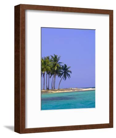 Palm Trees on Pelican Island