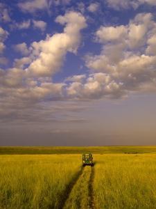 Safari Vehicle Touring Masai Mara National Reserve by Blaine Harrington