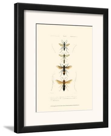 Antique Bees II