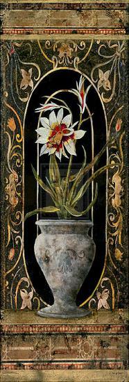 Blanco Botanical I-John Douglas-Art Print