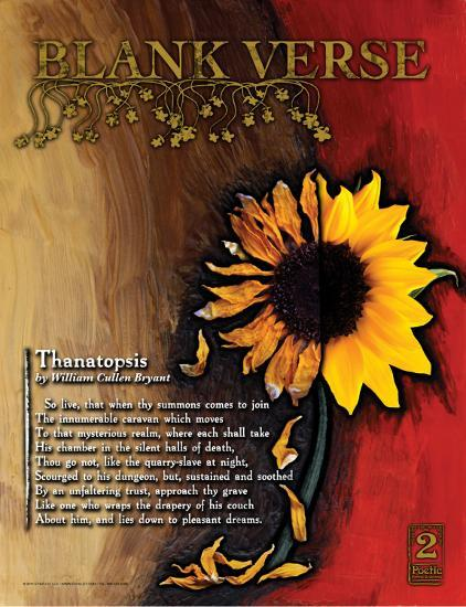 Blank Verse Poetry Form-Jeanne Stevenson-Art Print
