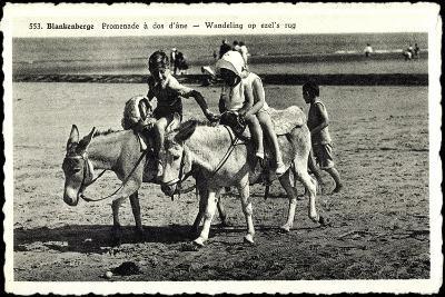Blankenberge Westflandern, Promenade À Dos D'Âne, Kinder Auf Esel--Giclee Print