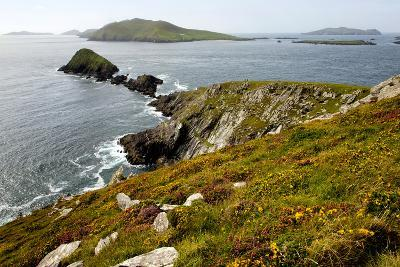 Blasket Islands from Dunmore Head, Dingle, Co. Kerry, Ireland-Chris Hill-Photographic Print