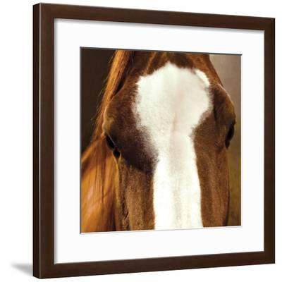 Blaze-Ray Hartl-Framed Giclee Print