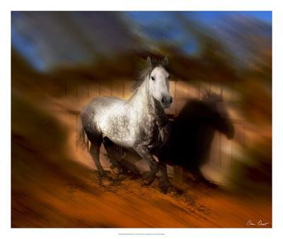 https://imgc.artprintimages.com/img/print/blazing-horse-iii_u-l-f6flvh0.jpg?p=0