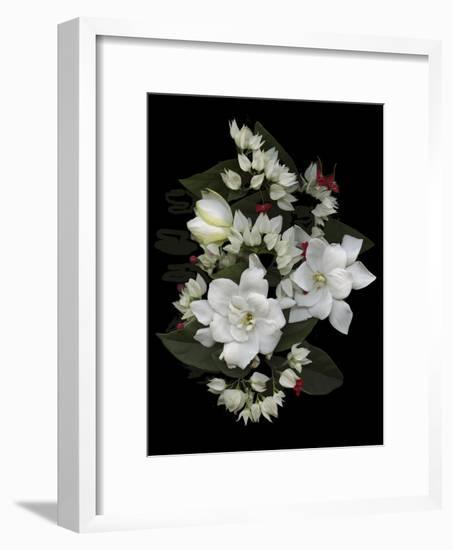 Bleeding Hearts and Gardenia-Susan S. Barmon-Framed Giclee Print